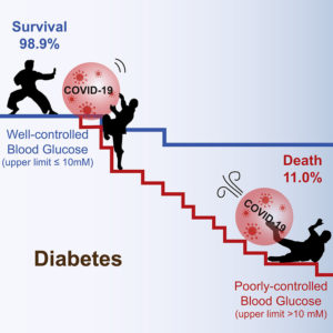 This image illustrates the different COVID-19 outcomes depending on whether blood glucose is under control or no